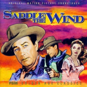SADDLE IN THE WIND