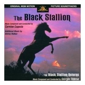THE BLACK STALLION / THE BLACK STALLION RETURNS