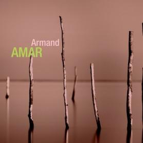 RÉTROSPECTIVE ARMAND AMAR
